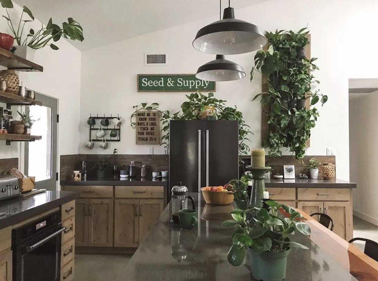最流行的植物墙装修